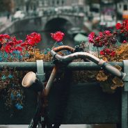 Bridge and bike in Amsterdam