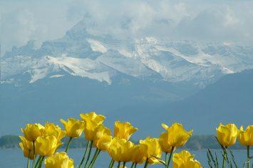 Music Performance Tours To Lake Geneva | Travelbound Music