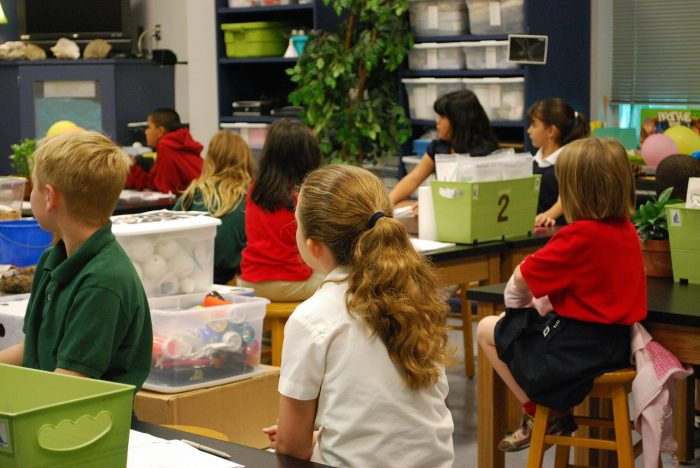 Science primary class