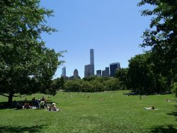 Central Park with city
