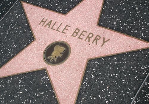Halle Berry Hollywood star