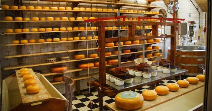cheese_factory
