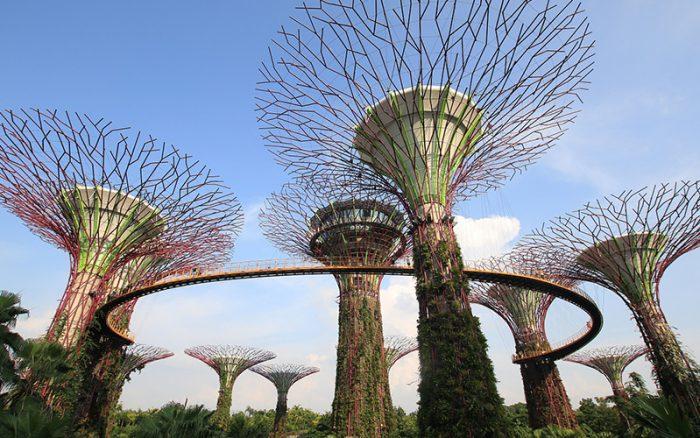 singapore_garden