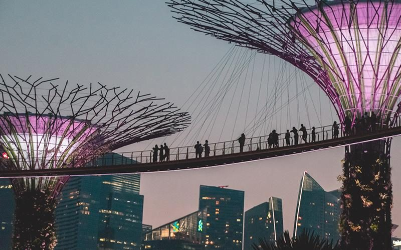 singapore_night_garden